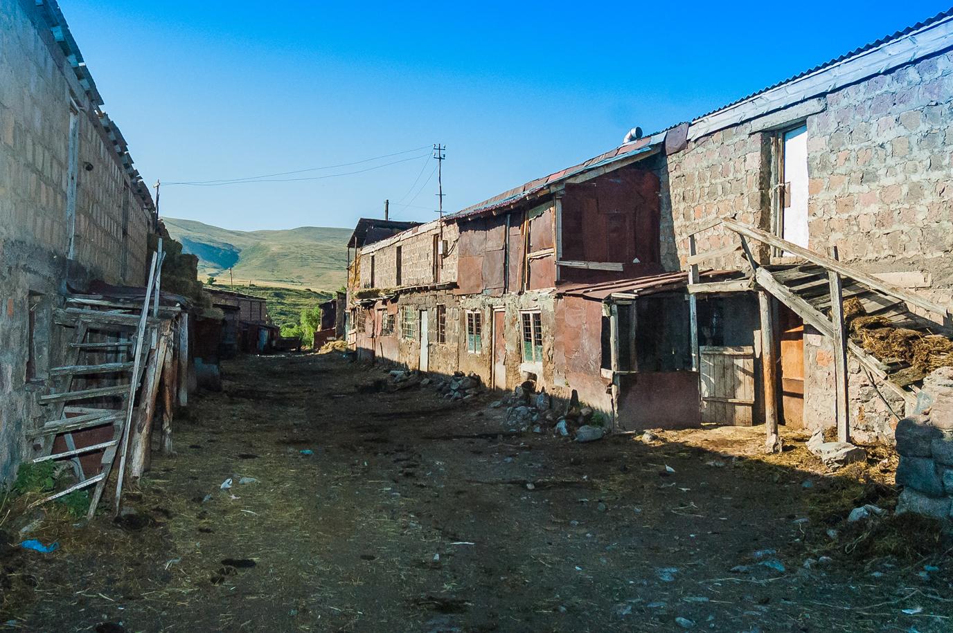 La ronde aux moutons : pratiques de gardiennage collectif des troupeaux communaux en Arménie